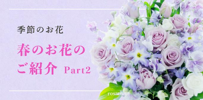 季節のお花 Sakaseruからお届けした春のお花のご紹介 Part2