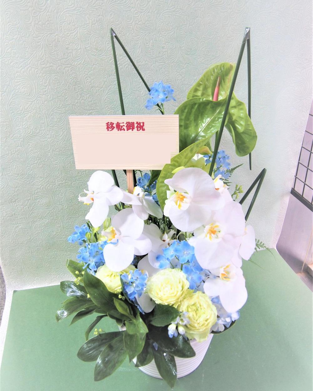 フォーマルにもふさわしい胡蝶蘭アレンジ 白 L