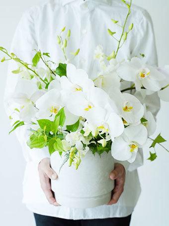 たくさんの胡蝶蘭を使ったアレンジ L