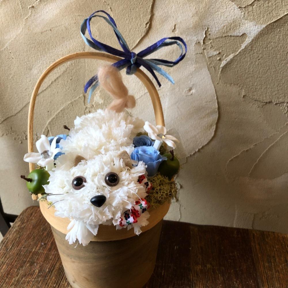 「猫のモチーフが可愛い」感謝の想いが込められたお祝い花