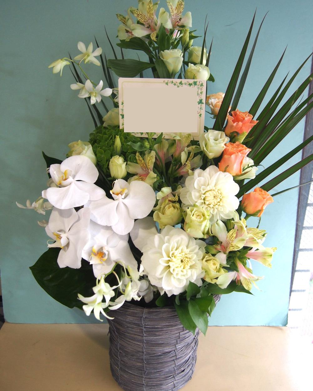 胡蝶蘭を使ったご開業祝いの上品な祝い花