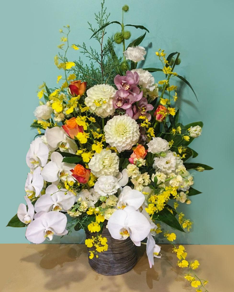 学術大会の舞台を飾る、胡蝶蘭が上品華やかな祝い花