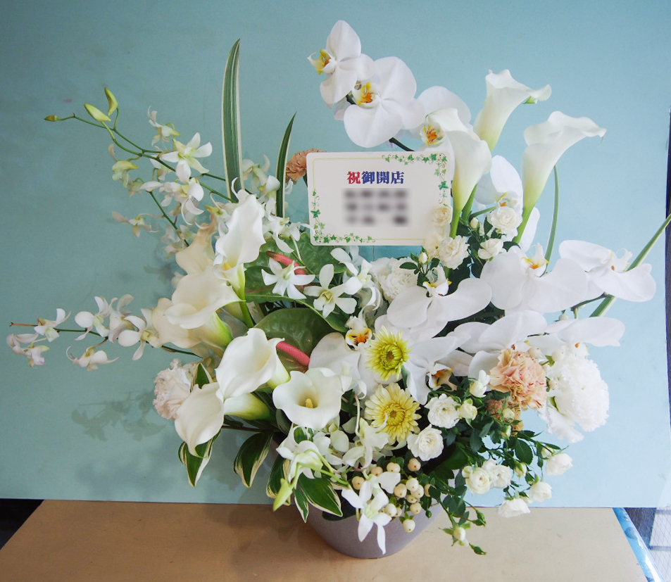おしゃれなカレー屋さんへ 胡蝶蘭を使った上品な開店祝い花