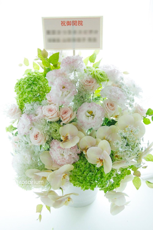 優しい色味の胡蝶蘭をメインとした、クリニック様ご開院祝い花
