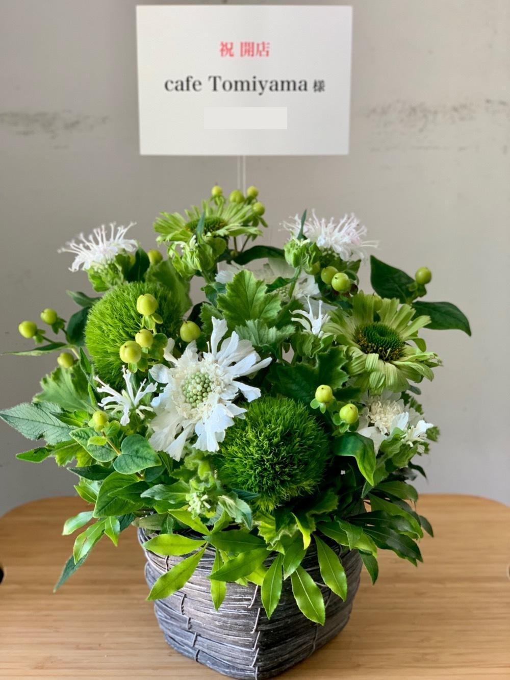 「みてるよ!応援してるよ!」の気持ちを込めたグリーンを基調とした開店お祝い花