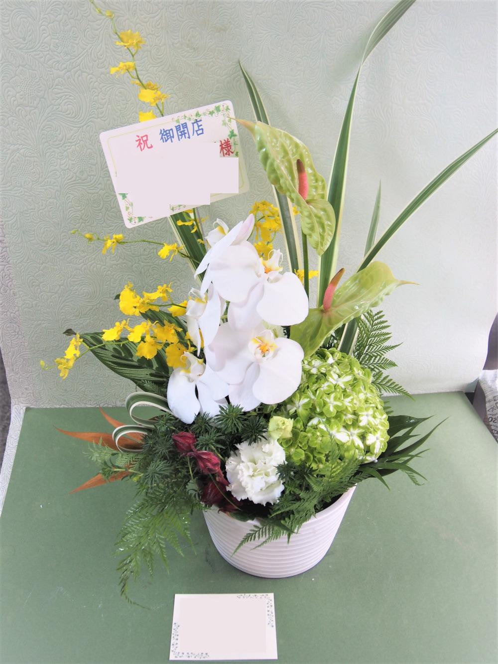 木の温もりを感じられるカフェ様への開店お祝い花