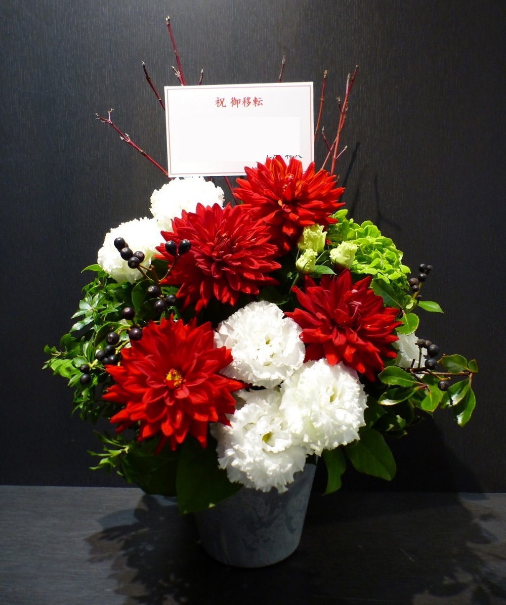 活気あるおしゃれな会社さまに贈られたご移転祝い花