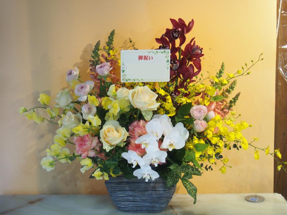 エステサロン開店祝い さりげない胡蝶蘭が上品な祝い花
