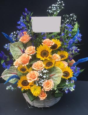 黄色とブルーが印象的な祝い花