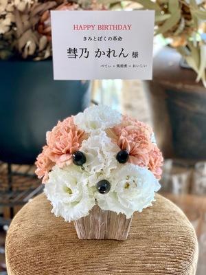 新宿SAMURAI [きみとぼくの革命 彗乃かれん 生誕祭] 彗乃かれん 様宛祝い花・楽屋花
