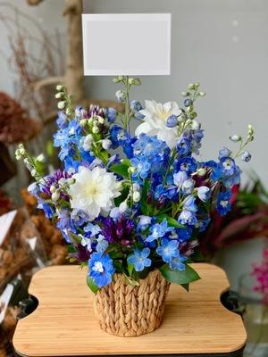 写真の個展祝い花