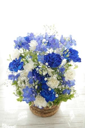 青のメンバーカラーのアイドル様へのお祝い花