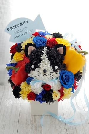 動物病院の開院祝いにも 猫ちゃんが可愛いプリザーブドフラワー祝い花