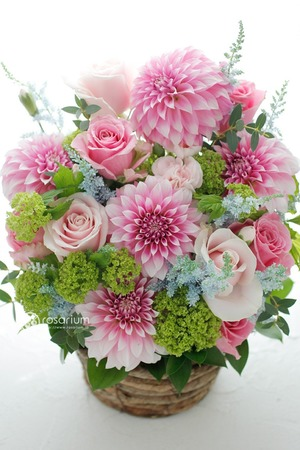 パライバブルーがお好きなお母さまへ 青を添えた母の日の祝い花