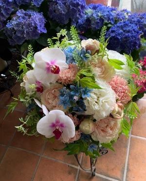 開院祝いにも 胡蝶蘭を用いた上品な母の日祝い花