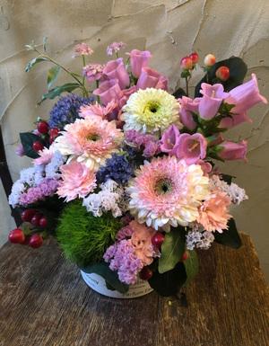 八重咲きガーベラに旬のカンパニュラを合わせたお祝いアレンジメント