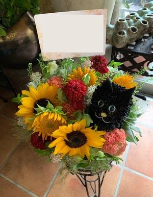 「黒猫・スペイン・夏らしさが印象的」お世話になるお店の周年祝い花