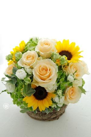 「感謝の想いをこめて」優しい色合い父の日祝い花