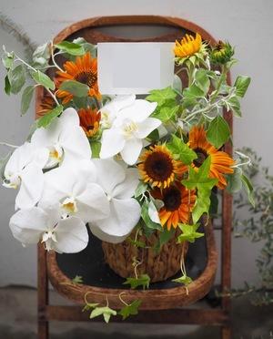 竣工祝い・落成祝いにも ヒマワリと胡蝶蘭の祝いアレンジ花