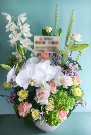 開院祝いにも 胡蝶蘭優しい色味を合わせた上品な祝い花