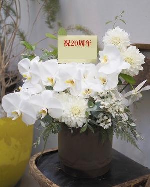 開院祝いにも 胡蝶蘭をメインにした品のある祝い花