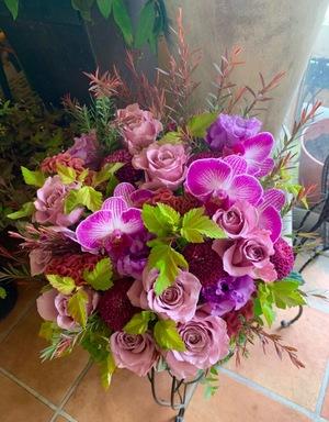 開院祝いにも 「日頃の感謝と今後のご発展を祈って」胡蝶蘭入り祝い花