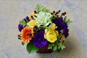 寒さも吹き飛ぶ!ビビッドでカラフルな祝い花|