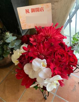 お店の雰囲気にあわせたゴージャスな赤色がメインの開店祝い花