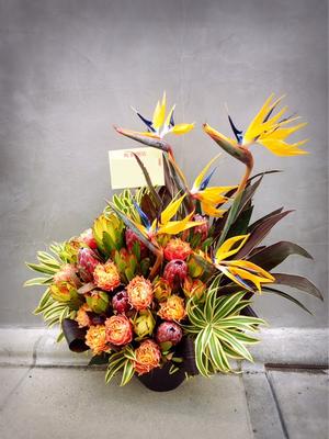個性的なお花を使った開店お祝い花