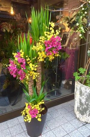 観葉植物をアレンジしたご移転祝い花
