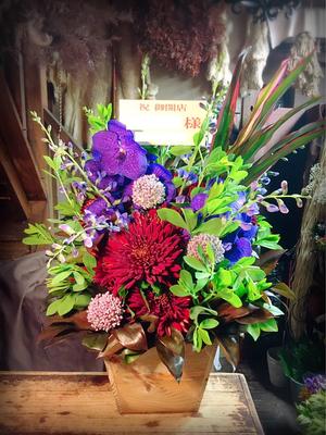 お仕事でお世話になった方へ送る赤がメインの開店お祝い花