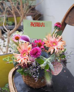 リラクゼーションサロン様開店お祝い花