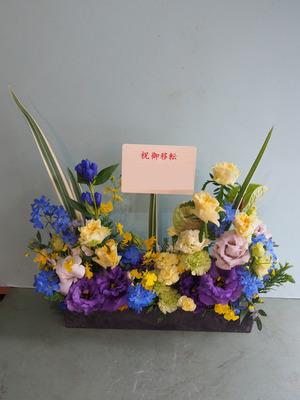 「お店の雰囲気に合わせて」個性的な移転祝い花