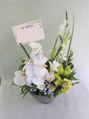 「和菓子屋さんへ」胡蝶蘭が印象的な開店祝い花