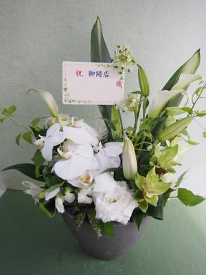 美容室様への白を基調とした開店祝い花