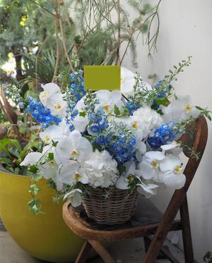 白を基調としたご開院お祝い花