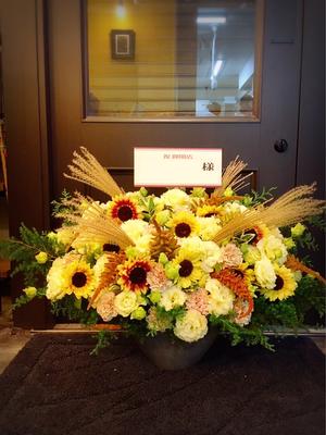 お店のイメージカラー黄色をメインにしたあたたかな雰囲気のおしゃれな開店お祝い花