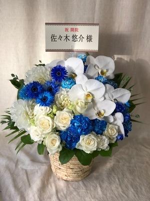ロゴカラーに合わせた清潔感のある白と青の開院お祝い花