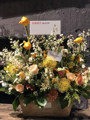 個展のお祝いにもピッタリ インパクト十分な祝い花