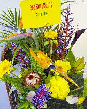 南国風の祝い花