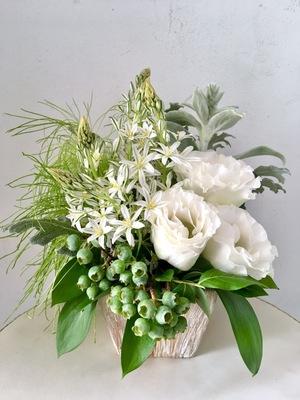 上品なセレクトショップさまに贈られた移転祝いの祝い花