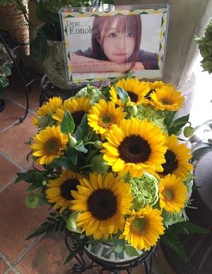 パシフィコ横浜 欅坂46 握手会 ご出演祝い花