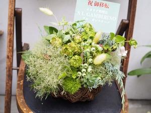 イタリア料理店様の移転祝い花